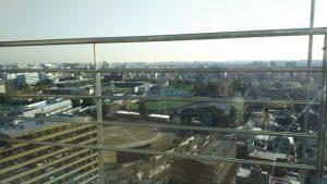 デイルームからの眺望