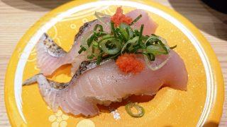 石川県産 柳さわら焼霜|もりもり寿し 三宮OPA2店